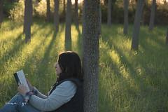 self (ana.gr.) Tags: wood selfportrait shy