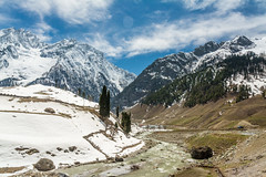 A view of Sonmarg (R. Karthik) Tags: india mountain snow beautiful river kashmir himalayas incredibleindia sonmarg