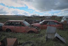 DSC_9801 (srblythe) Tags: uk classic cars ford abandoned graveyard car austin volkswagen scotland volvo rust fiat decay north rusty british scrapyard hyundai leyland vauxhall volvograveyard