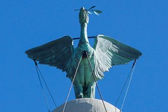 Liver bird - up close and personal. (manchesterblue59) Tags: uk liverpool easter nikon sunny scouse