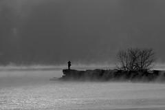 Fellow Photographer (Golden_Arrow) Tags: morning mist lake ontario cold tree fog pier stones silhouettes