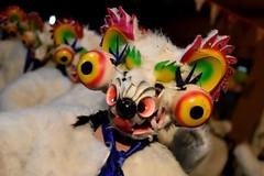 IX Carnaval Sin Fronteras (MartinFM) Tags: chile santiago color dance fiesta gente carnaval barrio baile independencia