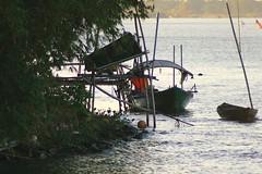 Sampan (RosinaOz) Tags: river dawn fishing vietnam hoian