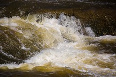 840A3033 (rpealit) Tags: nature river scenery wildlife rapids trail national waters winding refuge wallkill