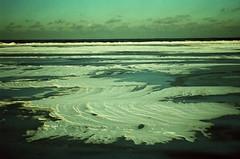 (rqlevy) Tags: winter lake snow analog 35mm frozen xpro crossprocessed fuji slidefilm provia vivitar colorshift 100f v335