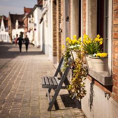 Walking Spring Bruges (2) (penwren) Tags: street flowers spring europe dof belgium bokeh brugge april bruges windowsill