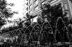 Jeux d'eau des jets d'eau (Iris.photo@) Tags: usa utah noiretblanc saltlakecity fontaine jetdeau