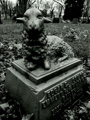 Woodlawn Cemetery (Gerri Gray Photography) Tags: blackandwhite bw newyork monochrome cemetery grave graveyard death memorial child gravestone lamb mementomori syracuse tombstones woodlawn gravemarker taphophilia