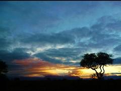 Tramonto Sudafricano (Monia R.) Tags: africa safari sudafrica