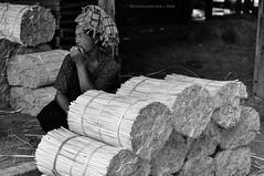 Inle Lake Market - Shan Woman with Bamboo (Nicholas Olesen Photography) Tags: travel people blackandwhite woman white lake black tourism monochrome horizontal person one sticks nikon asia market outdoor burma bamboo myanmar inle southeast shan twigs bundles d90