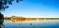 Lake Ginninderra (garydlum) Tags: au australia canberra belconnen australiancapitalterritory lakeginninderra