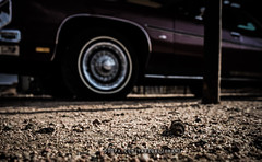 44 (T.ALJOHANI) Tags: old classic car