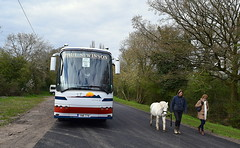 Coach & Horse - Rough Close, near Coventry (paulburr73) Tags: trees horse bus animal countryside coach april cubs coventry 67 westmidlands whitehorse coaches loughborough futura solihull beavers 58 2016 bova balsallcommon tilehill roughclose paulswinson boroughofsolihull fju973 ynr778