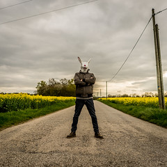ROGER LE ROI DE LA CAMPAGNE (nARCOTO) Tags: rabbit lapin