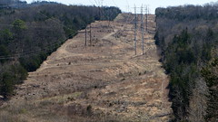 Clearing for high-power electric lines (krisknow) Tags: powerlines missouri branson tablerockdam