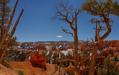 064_HDR.jpg (swissuki) Tags: bryce brycecanyon 2015 picabootrail
