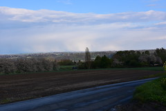 Fidélité (v.heldenbergh) Tags: champs pluie nuage colza herstal
