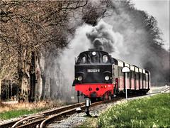Full steam ahead to the weekend (Ostseetroll) Tags: geotagged deutschland weekend deu wochenende dampflokomotive molli steamlocomotive mecklenburgvorpommern fullsteam rennbahn baddoberan volldampf geo:lat=5412663603 geo:lon=1187438495