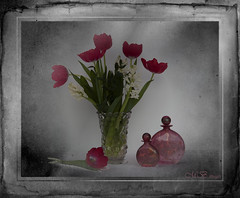 Still Life with Hyacinth (maureen bracewell) Tags: flowers stilllife tulips springflowers hyacinths vintageframe digitalartistry vintagevase maureenbracewell saariysqualitypictures stilllifephotoart