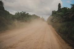 Envirolabs Asia Trip to Borneo. (yncphotodoc) Tags:  white tom southeastasia jungle sarawak malaysia borneo environment activism claremontcollege enviromentalstudies yalenus tomwhite envirolabsasia envirolabasia