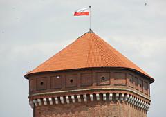 Wawel Castle in Krakw (kenjet) Tags: roof tower castle architecture europe flag poland krakow wawel structure krakw cracow wawelcastle