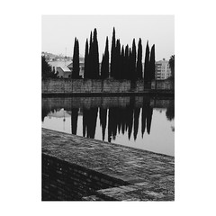 (Vallelitoral) Tags: blackandwhite bw cute blancoynegro water vintage nice sevilla agua andalucia bn retro reflejo rbol iphone alberca iphonegraphy jardinesdelabuhaira