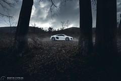 Audi R8 V10 Plus (CypoDesign) Tags: auto trees white car fog speed forest germany volkswagen power seat smoke automotive ferrari german porsche mercedesbenz stunning plus slovakia audi powerful supercar v10 r8 supersport tailights cyprian cypo cypodesign