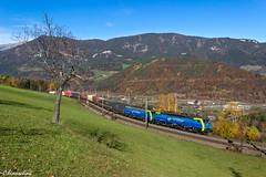 PKP Cargo 189 842 und 846 mit Containerzug (TheKnaeggebrot) Tags: siemens cargo tec semmering 189 eichberg pkp br189 apfelwiese tec40505