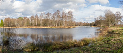 Wide panorama of small lake in Drenthe, Netehrlands (frank.hoekzema) Tags: park blue trees winter sky panorama sun sunlight lake cold holland reflection green nature water colors clouds forest landscape seasons view cloudy scenic peaceful panoramic calm fresh drenthe