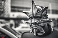 Weed Man Union Square Street Photo NYC (Street Photo NYC) Tags: nyc usa ny newyork weed marijuana unionsquare ganja