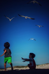 The sky was the limit (Mister Blur) Tags: blue seagulls beach boys 35mm libertad freedom nikon skies yucatan happiness run felicidad sisal hijos intothegreatwideopen d7100 underthemskiesofblue