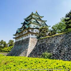 ปราสาทนาโงย่า (Nagoya Castle) ตั้งอยู่ที่เมืองนาโงย่าจังหวัดไอจิ ถูกสร้างขึ้นตามคำสั่งของโชกุนโทกุงาวะ อิเอะยะสุ เพื่อเป็นฐานอำนาจความมั่นคงและป้องกันการโจมตีจากทางเมืองโอซาก้า บนเส้นทางสายใต้ที่เรียกว่า (Tokaido) ตัวปราสาทนาโงย่าสร้างจากฐานหินก้อนขนาดใหญ