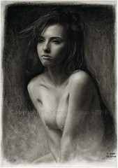 Dessin / Drawing - Sophia Blake (British model) © Yannewvision - 2016 (-Yannewvision-) Tags: portrait blackandwhite bw sexy mannequin illustration naked nude model glamour noiretblanc nu drawing picture porträt dessin modelo nackt teen charcoal topless glam drawn dibujos modell youngwoman desnudo croquis zeichnung fusain 2016 modèle 白黒 naughtygirl enblancoynegro jungefrau mancave jeunefemme モデル anglaise twitter 肖像画 乙女 englishwoman ukgirl kohlezeichnung 木炭画 brunettebabe dibujoalcarbón schwarzundweis 描画 yannewvision sophiablake sophiablakexx mancavephotography