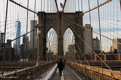 Brooklyn - Manhattan (Daniel Moreira) Tags: world new york city nyc bridge people usa ny tower bandeira brooklyn america buildings one pessoas skyscrapers manhattan flag united ponte eua states estados cus edifcios unidos obervatory arranha