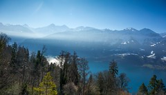 Misty Mountains - Beatenberg, Switzerland (paulapics2) Tags: trees winter vacation lake holiday snow mountains water misty landscape outdoors switzerland see haze view blues canon5d atmospheric thunersee snowymountains glistening