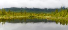 Vermilion Lakes (peter.beutler1) Tags: lake canada nikon banff vermilionlakes