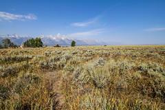 Grand Teton NP - Mormon Row (gregoryl.johnson56) Tags: grandteton jacksonhole mormonrow