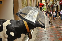 A la vaca le gusta mirar (ala_j22) Tags: art calle lluvia nikon sigma granada paraguas aire libre 30mm d7000