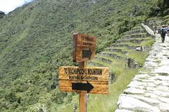 Inca trail 1058907 (Yori Hirokawa) Tags: machu picchu inca trail machupicchu