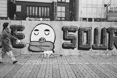 Walking the Dog (minwage3412) Tags: street bw dog streetart film analog 35mm walking graffiti delta korea seoul ilford  hongdae 3200iso rollei35se