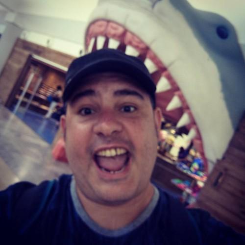Queme come... El tiburón, el tiburón me come el tiburón