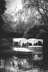 Gondoletta (sfp - sebastian fischer photography) Tags: park nature landscape boot see boat natur brcke teich landschaft mannheim stadtpark gondel luisenpark bundesgartenschau gondoletta