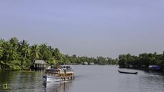 Backwaters of Kerala (pkjayan) Tags: kerala backwaters