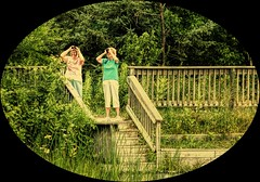 Bird Watchers (Wes Iversen) Tags: trees people texture nature stairs women michigan fences binoculars borders baycity hff baycitystaterecreationarea fencefriday