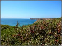 Playa de Beliche (Portugal) (sky_hlv) Tags: praia beach portugal faro playa algarve cabodesaovicente sagres cabodesanvicente praiadobeliche belichebeach playadebeliche viladoobispo