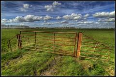 Gellicum (ronver1960) Tags: sky holland netherlands grass clouds fence march spring gate meadow churchtower grassland hdr mudd vilage gelderland betuwe gellicum