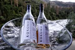 After a Hard Day Exploring Yosemite (lennycarl08) Tags: wine yosemite ros yosemiteviewlodge kokomowinery