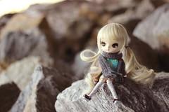 little adventurer (e f i c h u ) Tags: new golden eyes doll dal wig blonde pullip hybrid cornelia coolcat nelia obitsu eyechips leekeworld 21cm rewigged dotori rechipped evecream efichu