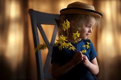 Dreaming (Sonya Adcock Photography) Tags: flowers light painterly girl hat kid nikon moody child indoors forsythia nikkor strawhat windowlight nikond700 nikkor105mmdc