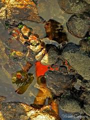 No espelho d'gua. - In the mirror of water. (Viviane Cerqueira) Tags: brazil gua brasil mar bahia salvador popular festa reflexo pedra fevereiro nautico dgua yemanj challengeyouwinner friendlychallenges beginnerdigitalphotographychallengewinner cyunanimous